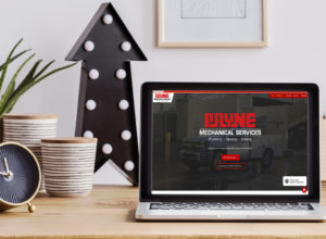 Payne-website-design