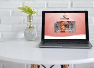 strauss-websitedesign